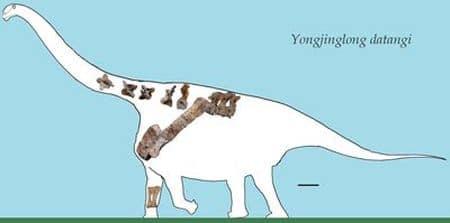 Yongjinglong datangi.