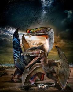Pterosaure Hamipterus avec oeufs fossiles, les Pterosaures sont des reptiles volants.