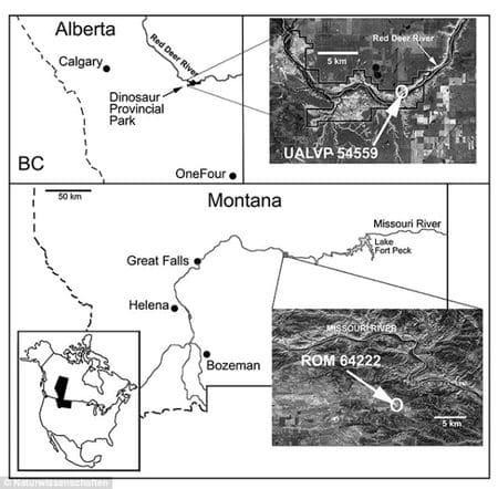 Les sites paléontologiques de découvertes de Mercuriceratops.