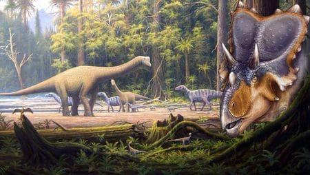 Le dinosaure Mercuriceratops au Crétacé.