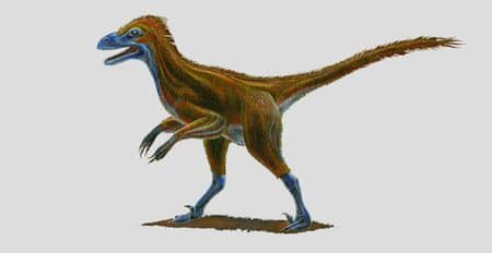 Le dinosaure Yurgovuchia.
