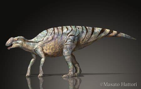 Le dinosaure Rhinorex.