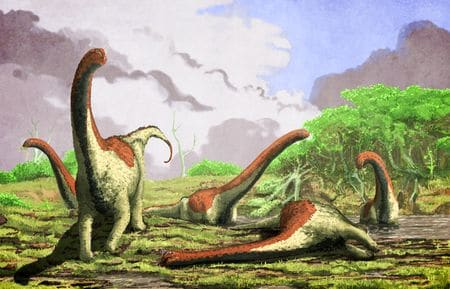 Le dinosaure Rukwatitan bisepultus.
