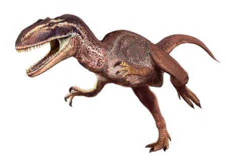 Metriacanthosaure.