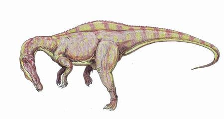 Dinosaure Suchomimus tenerensis.