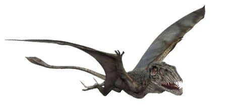 Le Ptérosaure Dimorphodon.