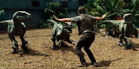 Owen Grady avec les Velociraptors du film Jurassic World.