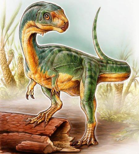 Chilesaurus Diegosuarezi.