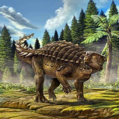 Dinosaure Kunbarrasaurus.