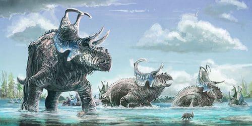 Le dinosaure Machairoceratops.