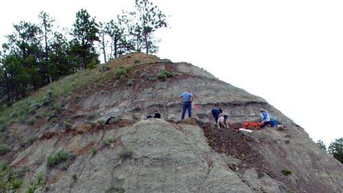 Site paléontologique dans le Montana (USA) où ont été trouvés les fossiles du dinosaure Spiclypeus.