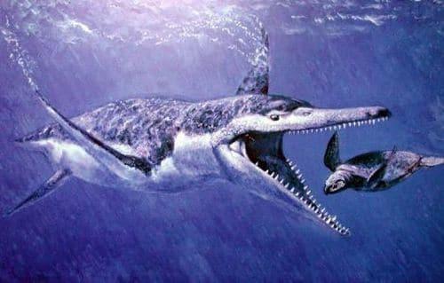 Pliosaurus, un reptile marin.