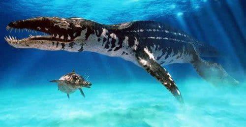 Les Pliosaures étaient de grands diapsides marins, anciennement qualifiés de reptiles marins.