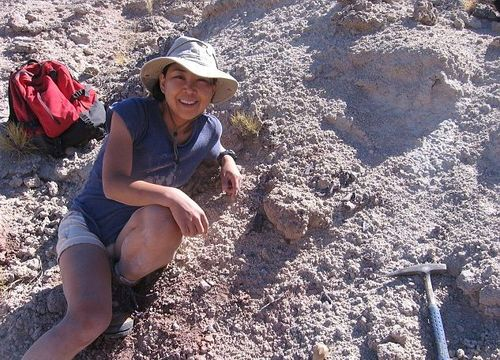 Site paléontologique où ont été trouvés les fossiles du dinosaure Gualicho en Argentine.