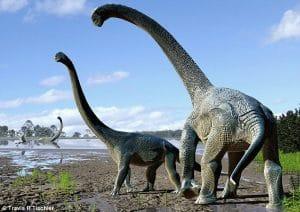 Dinosaure Savannasaurus elliottorum.