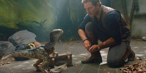 Chris Pratt et un bébé dinosaure dans Jurassic World Fallen Kingdom