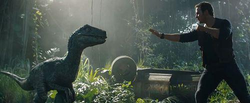 Velociraptor dans Jurassic World Fallen Kingdom